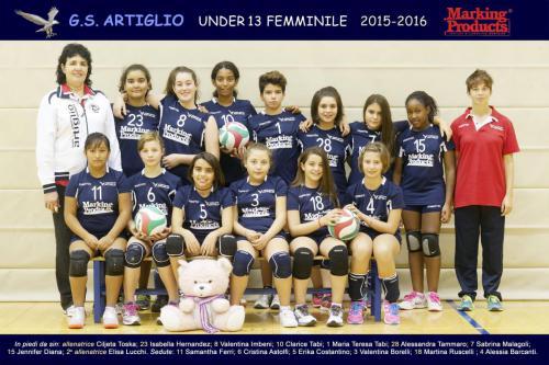 2015_2016_U13F